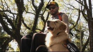 Бразильский рэппер и золотистый ретривер борются за прав собак-помощников (новости)(, 2014-08-23T19:20:13.000Z)