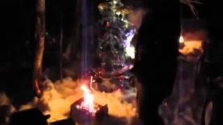 видео Встреча Нового года в лесу