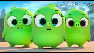 Angry Birds la Pelicula Zoe Sam Sam And Vivi
