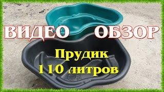 Рыба на даче: видео-инструкция как разводить своими руками, разведение, зимовка в дачном пруду, фото