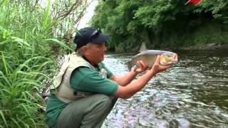 Уроки рыбной ловли. 2 выпуск. Голавль на искусственную приманку