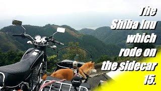 サイドカーに柴犬15 [ 秘境 府道61号線ツーリング] 動画中「27分弱」...