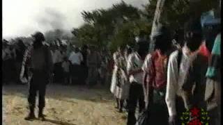 Banda Bassotti-Viva Zapata