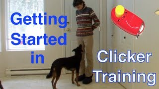 Getting Started with Clicker Training-Basic Technique Tutorial  for Beginners