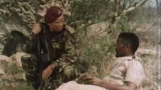 Die Wildgänse kommen - Trailer