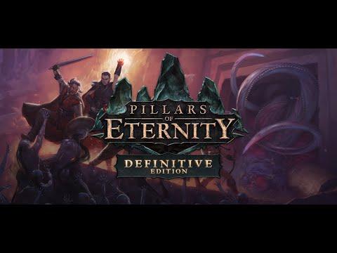 Pillars of Eternity   Definitive Edition |