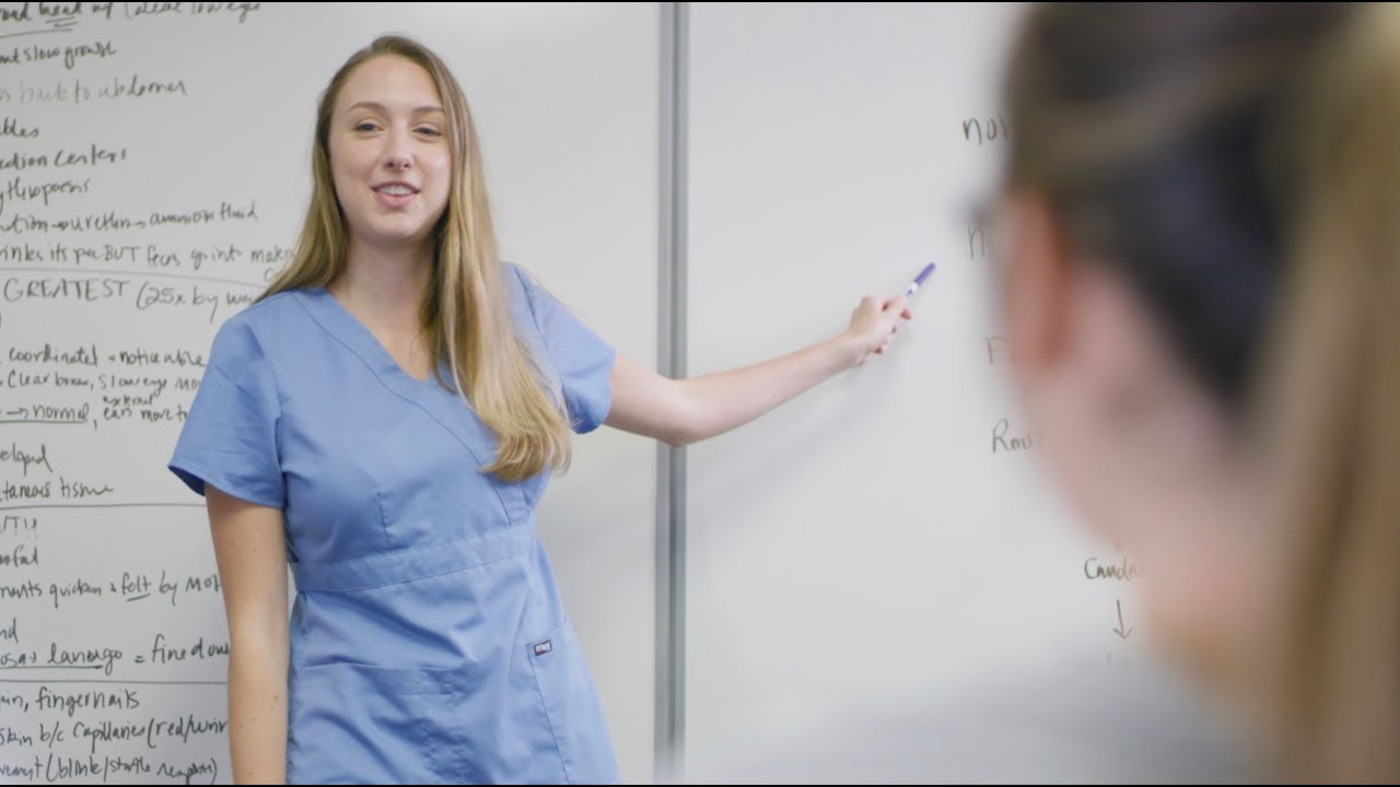 Medical Sciences Pre-Professional | USF Health