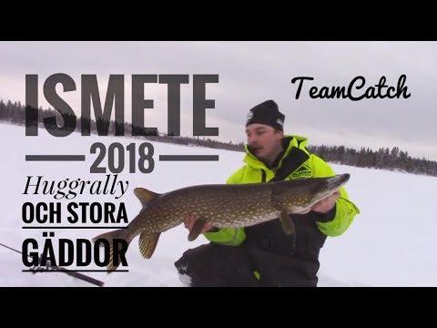 Ismete 2018 Huggrally och stora gäddor  Team Catch