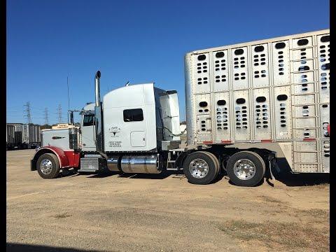 SheDaisy Come Home Soon-bull hauler