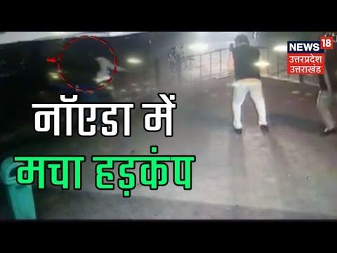Greater Noida: विकास प्राधिकरण के ठेकेदार की गोली मारकर हत्या, बेख़ौफ़ हुए बदमाश ?