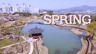 |드로니 Drone| 봄(Spring) - DJI Ma…