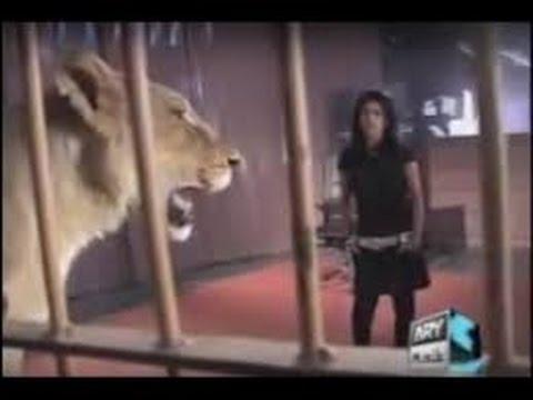 A Girl Accept Lion Dare In Waqar Zaka Show