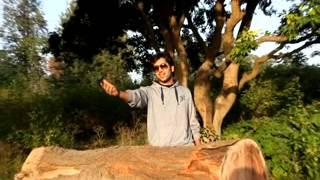 LuvkushSengar   Raabata Music Video   Saif Ali Khan   India