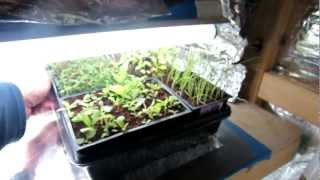 Basic Vegetable Grow-light Closet Design - The Right Lighting: The Rusted Garden 2013