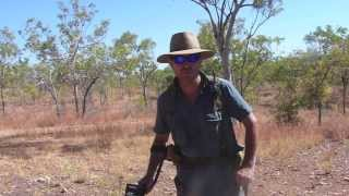 Gold Prospecting: 6 Days in the North Queensland Goldfields: Garrett AT Gold.