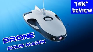 DRONE SOUS MARIN - 4K CAM ONBOARD - UNDER WATER ROBOT - POWERRAY REVIEW + TESTS