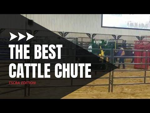 Best Cattle Chute | Livestock Equipment Showdown At The TSCRA