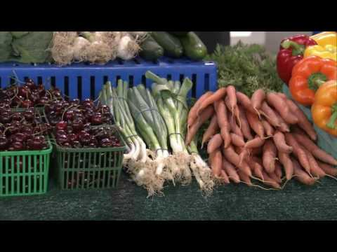 11 Maqui berry farmers Market Shopping Tips
