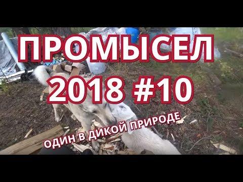ПРОМЫСЕЛ 2018-19. #10