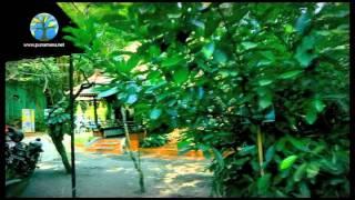Repeat youtube video Punarnava Ayurveda Hospital