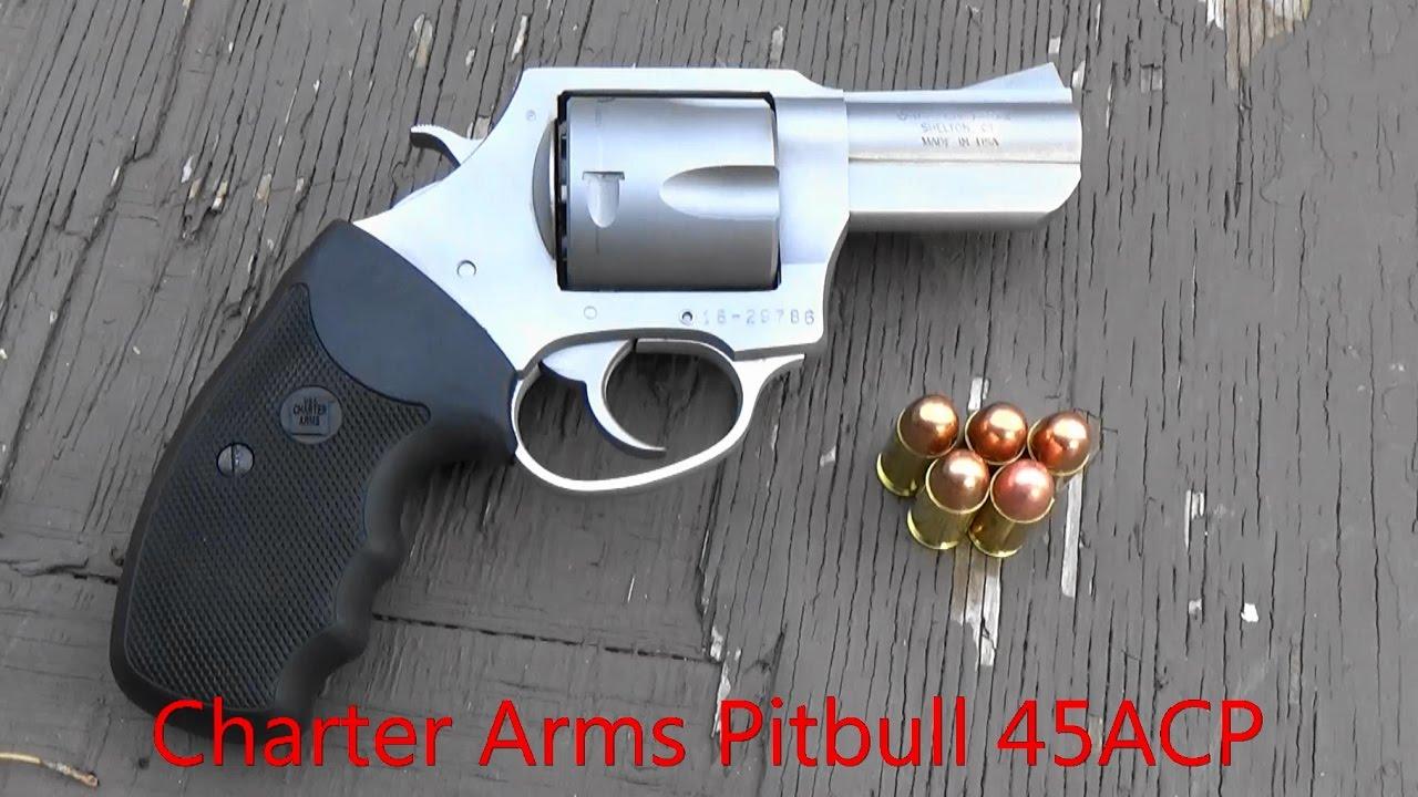 Charter Arms Pitbull 45ACP