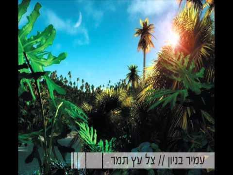 עמיר בניון צל עץ תמר Amir Benayoun
