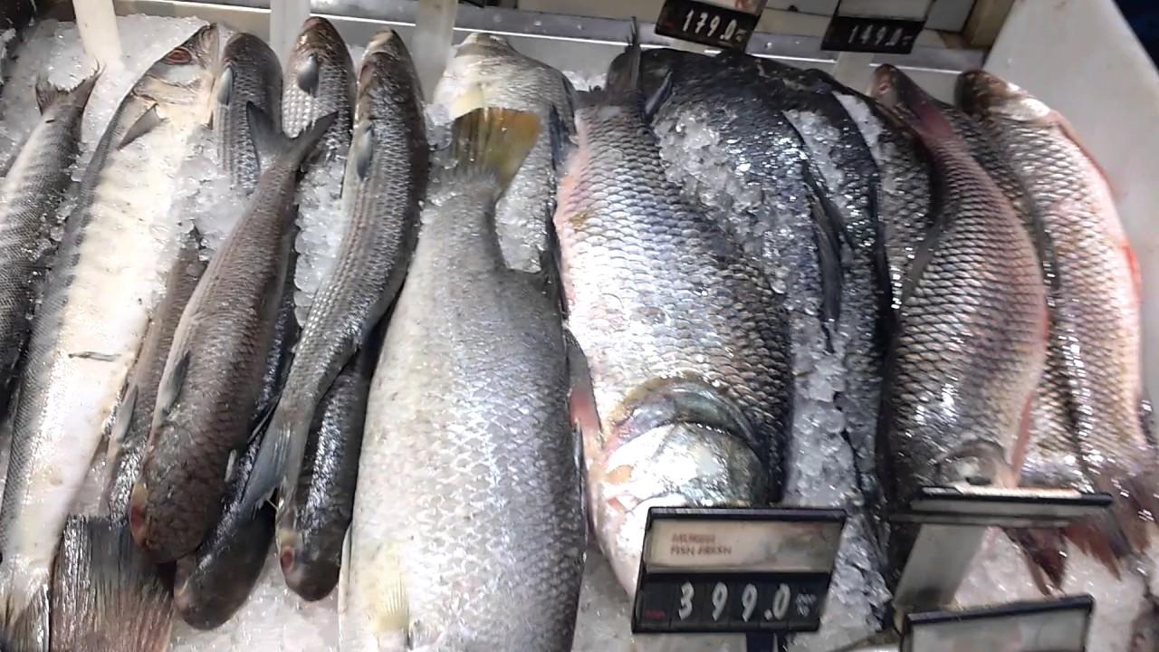 Fish Market in bangalore - YouTube