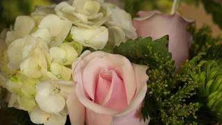 The Dizzy Daisy Floral Shop | Promo video | Joseph Films