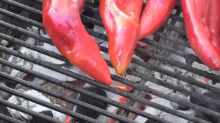 Diy Food - Marinated Roasted Chillis