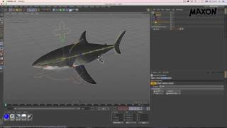 Webinar Character Animation In Cinema 4D