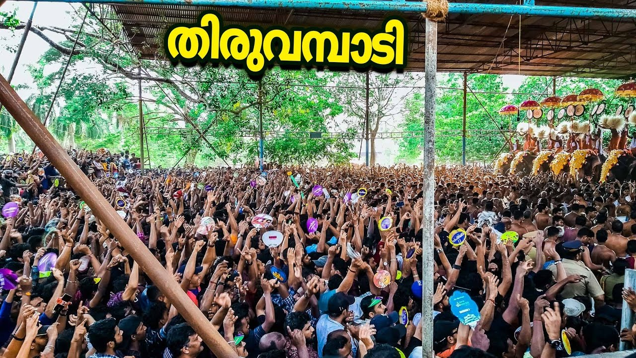 Download #Thrissurpooram pandimelam 2019    Feel the roar