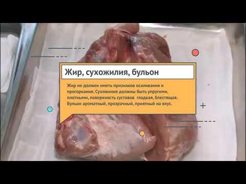Определение качества мяса в домашних условиях