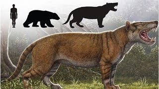 Science news: Missing link super-predator ruled Earth for millions of years