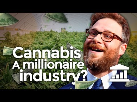 Legalizing Marijuana, a Good Idea? - VisualPolitik EN