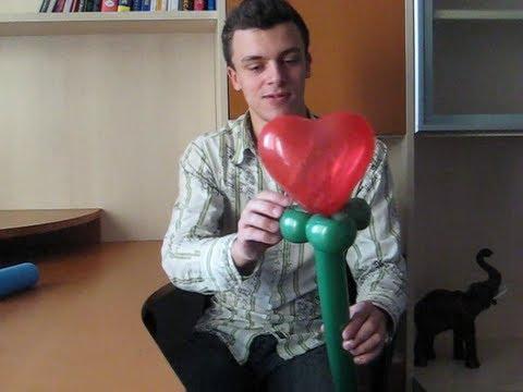 Роза Из Шариков Колбасок Инструкция