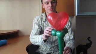 Как сделать своими руками цветы из шариков колбасок. How to make your hands flowers.