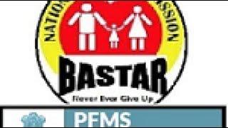 PFMS (PUBLIC FINANCIAL MANAGEMENT SYSTEM) INTRO --DIST BASTAR
