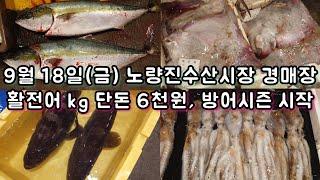 오늘 새벽 촬영! 9월18일(금) 노량진수산시장 최신동…