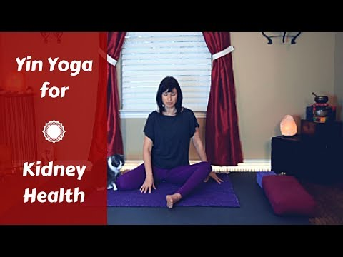 Yin Yoga for Kidney Health {35 mins} | Yin Yoga for Legs, Back & Hips | Kidney & Bladder Meridians