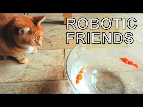 Alvi Cat : Robotic Fish In Water Bowl