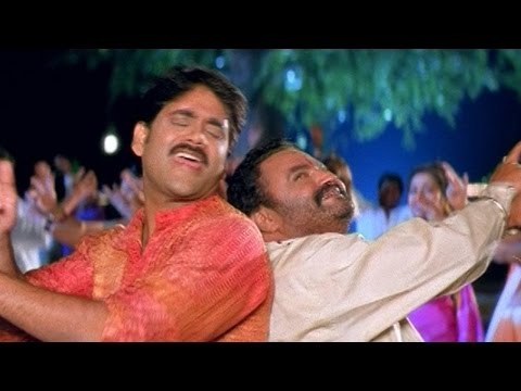Seetaramaraju Movie || Changure Changure Video Song || Nagarjuna,Harikrishna