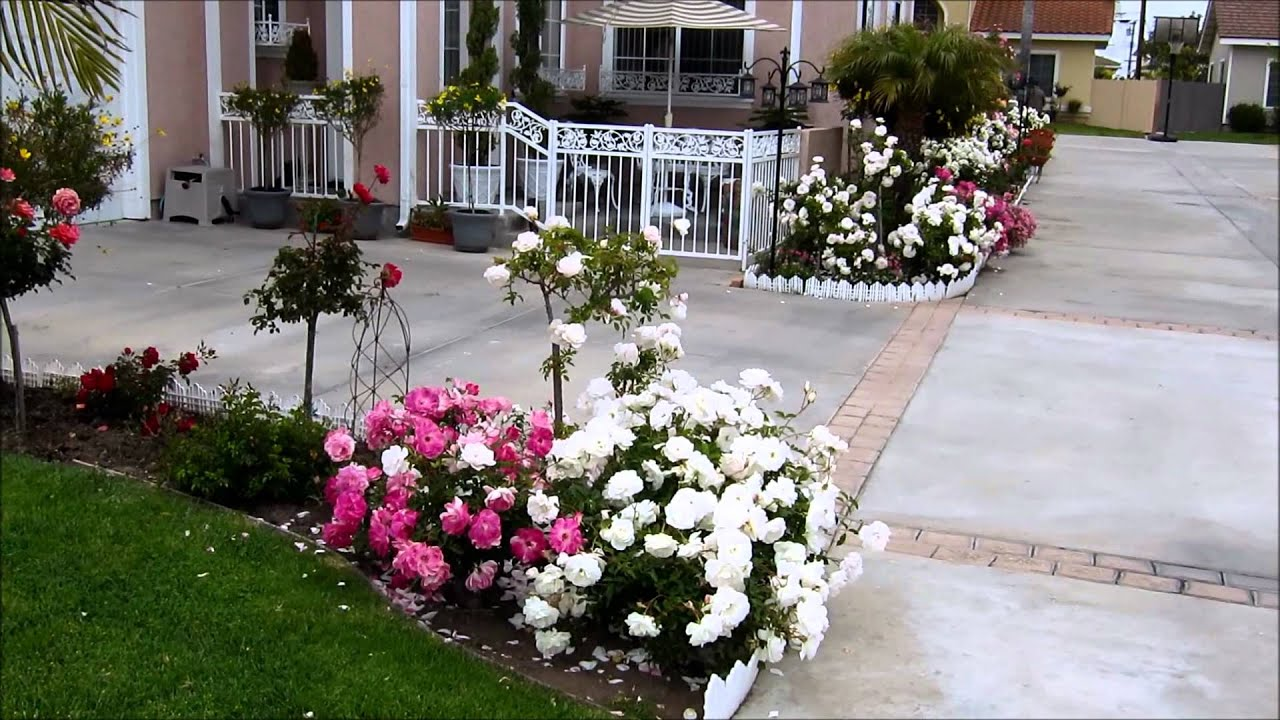 Outdoor flower decorations youtube for Flower garden decorations
