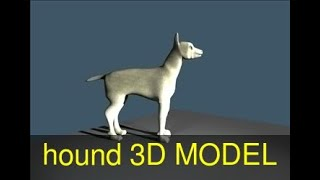 3D Model of hound Review