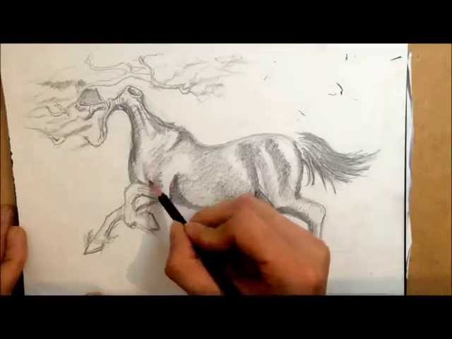 Cypress tree Horse, Time lapse sketch