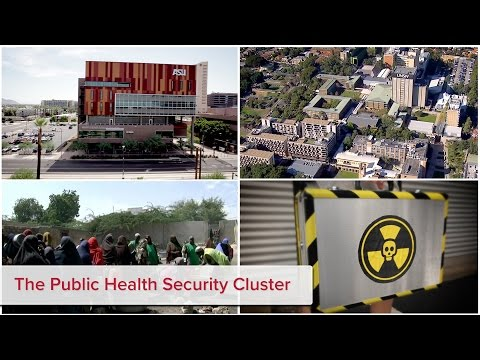 The Public Health Security Cluster
