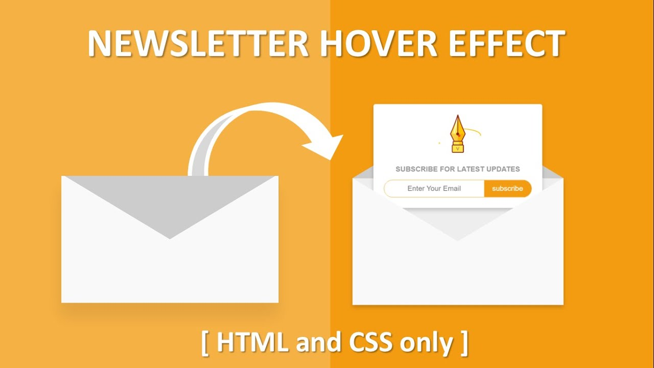 HTML and CSS Newsletter Design With Hover Effect