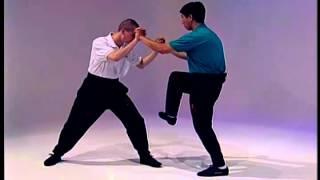 叶问宗师一脉 咏春拳体系教学07  Siu Nim Tao