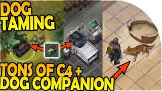 PET DOG COMPANION - TONS of C4 + PET DOG TAMING - Last Day On Earth Survival 1.7.1 Update