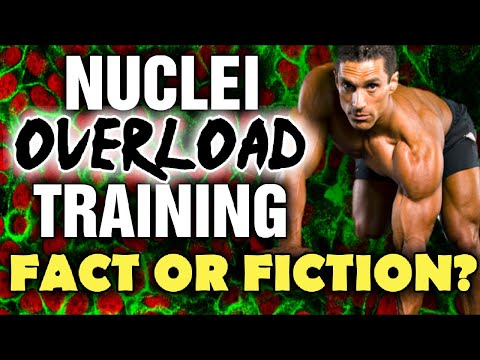 Nuclei Overload Training Does it Work?
