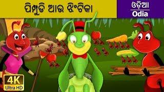 ପିମ୍ପୁଡି ଆଉ ଝିଂଟିକା   Ant and the Grasshopper in Odia   Odia Story   Odia Fairy Tales